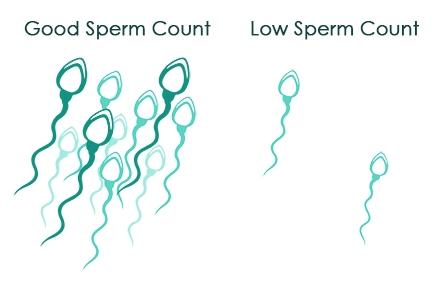 Poor sperm concentration